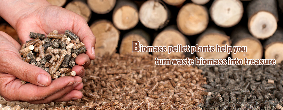 Biomass pellet plants help you turn waste biomass into treasure